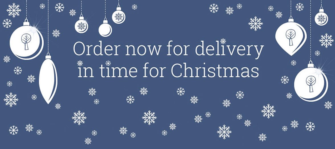 Order Now For Pre Christmas Delivery