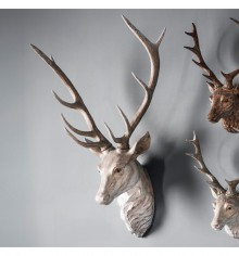 Gallery Archie Stag Head